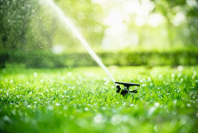 lush green grass with a sprinkler misting the air
